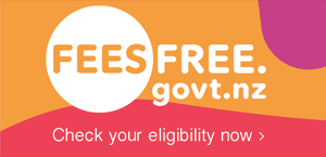 Button for visting the feesfree.govt.nz website